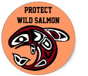 protect_wild_salmon_sticker-rdbc9207bc2e2474198784ad036f9ee14_v9waf_8byvr_324